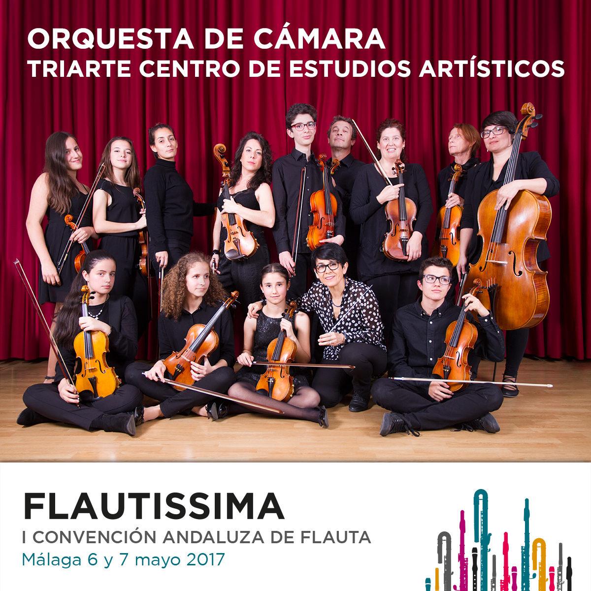 Orquesta Cámara Triarte Flautissima